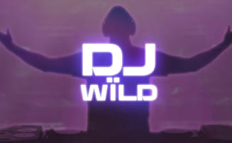 DJ Wild slot from ELK Studios